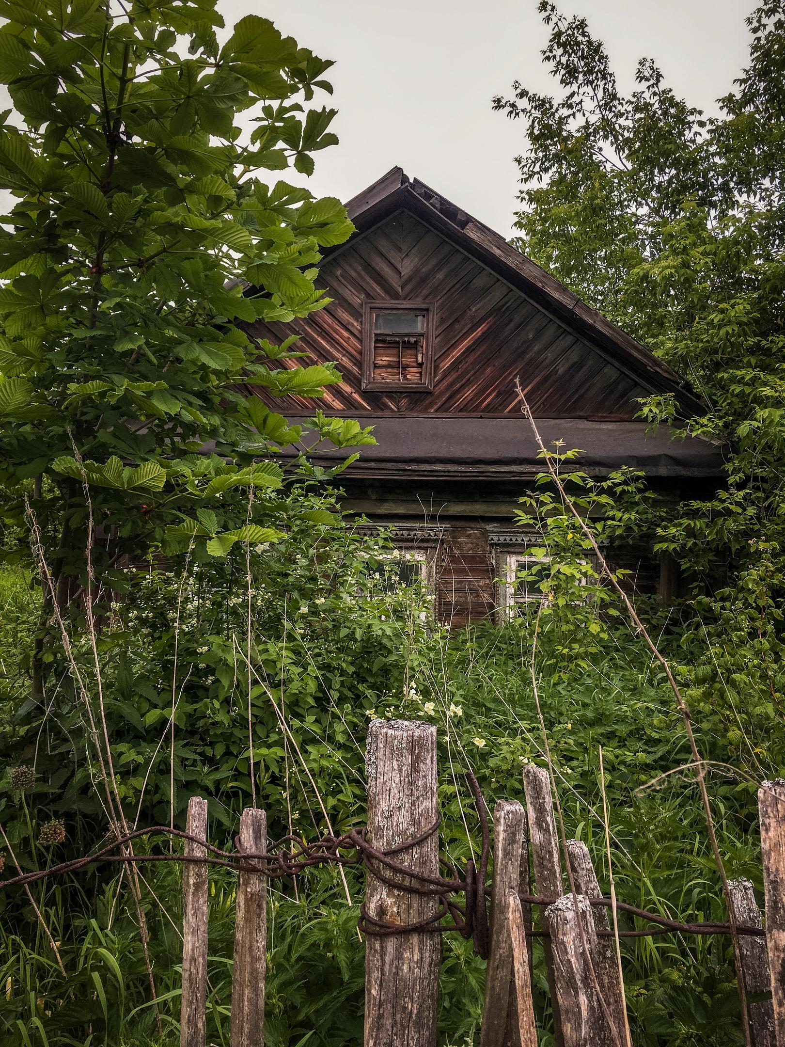В Ярославле - Фото