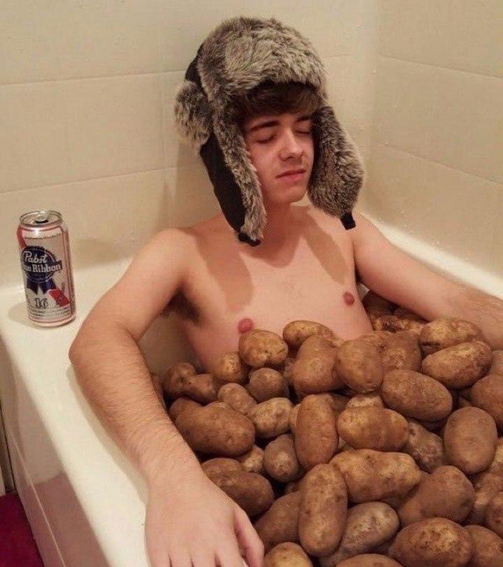Картошка может всё