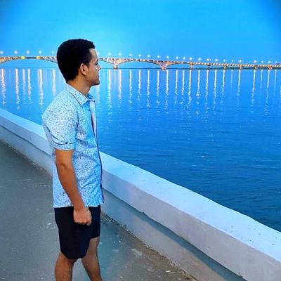 Эмад-Саид Наруз